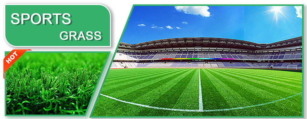 China best Football Artificial Grass on sales