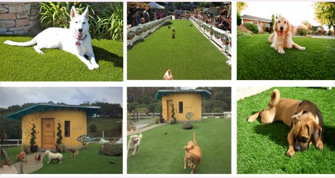 U Shape 20mm Pet Friendly Fake Grass PE Soft And Durable Indoor / Outdoor Use
