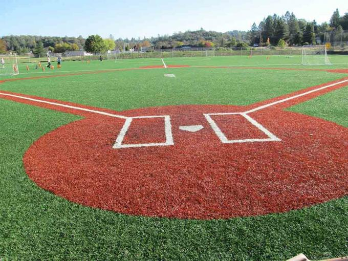 45mm 14500 Dtex Baseball Artificial Turf S Shape Curled Non Infill SGS Approved