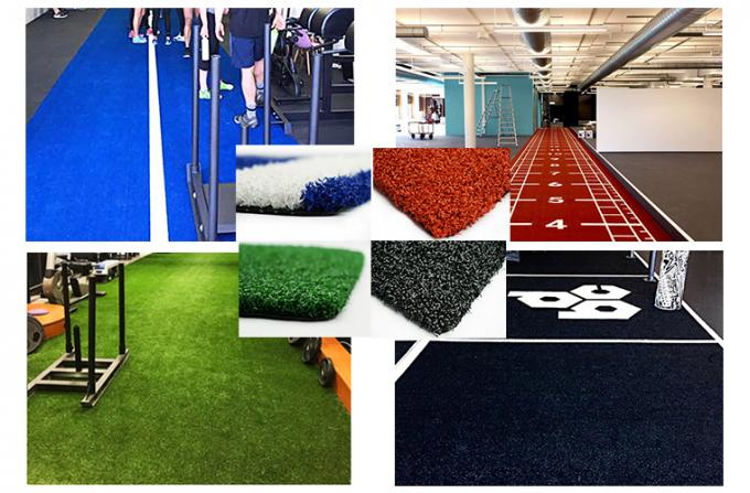 2m* 10m Artificial Speed & Agility Turf with high traffic for pushing sled