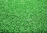 China Green UV Resistant Gym Artificial Turf For Sled Barbell Sports With Soft Feeling factory
