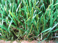 Best Economical Landscaping Artificial Grass Synthetic Lawn For Sports , PP + net cloth