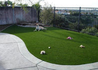 25mm Antibacterial Yarn Synthetic Turf For Pets No Harmful For Dogs 11000 Density
